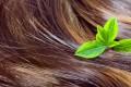 Wat is een haaroliebehandeling?